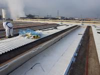 Posa isolamento lana di roccia dopo rimozione amianto tetto Cantiere Fratelli Sartori